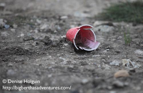 Big Bertha's Adventures